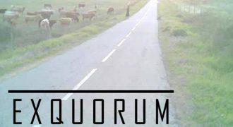 exquorum