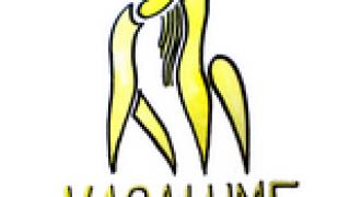 vagalume - Copie